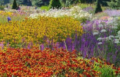 kew-gardens